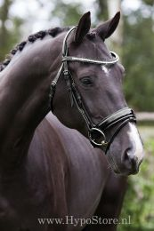 "Premiera ""Milano"" Black bridle with anatomically shaped headpiece and patent leather noseband"