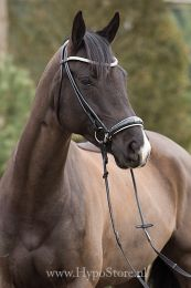 "Premiera ""Novara"" Black rolled bridle with white padded drop patent leather noseband"