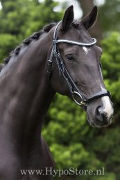 "Premiera ""Savona"" black bridle with padded drop patent leather noseband and anatomically shaped headpiece"