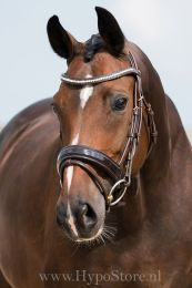 "Premiera ""Milano"" Brown bridle with anatomically shaped headpiece and patent leather noseband, gold buckles"