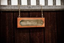 Grooming Deluxe Stable Name Plate Hanger