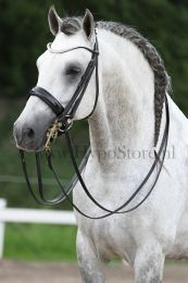 Premiera ''Prades'' Black double bridle with crystal browband, gold buckles