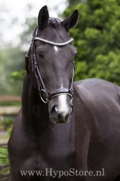 """Premiera """"Savona"""" brown bridle with white padded drop patent leather noseband and anatomically shaped headpiece"""