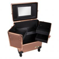 Imperial Riding Grooming Box Shiny Big