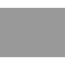 Nilette hairnet with bow strass black
