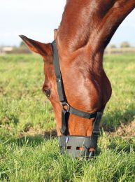 Shires Grazing Muzzle
