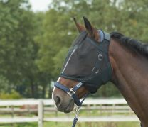 Busse Fly Mask Fly Guard