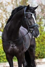"Premiera ""Verona"" black anatomical bridle"