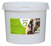 Excellent Foal milk powder