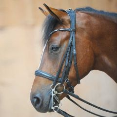 Kavalkade Ivonne Combi Bridle Snaffle and Double