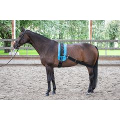 Harry's Horse elastic band for lunging