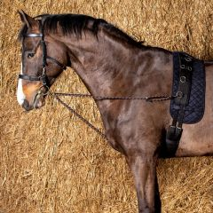 Harry's Horse Lunging cord V-line with snap hooks