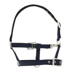 Norton Foal Halter Respirant