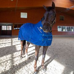 Accuhorsemat Cooler with acupressure mats