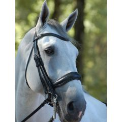 Dyon double bridle with large crack noseband