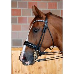 Dyon rolled double bridle with large patent crack noseband