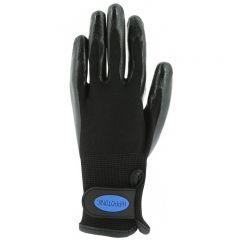 Hippo-Tonic Grooming Glove