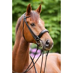 Premiera ''Rome'' Black rolled double bridle with 4.5 cm patent leather noseband