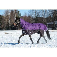Weatherbeeta ComFiTec Plus Dynamic Combo Medium/Lite  100g Purple/Black