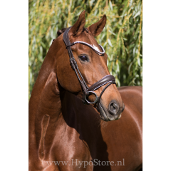 """Premiera """"Latina"""" brown anatomic bridle with white padding and patent leather details"""
