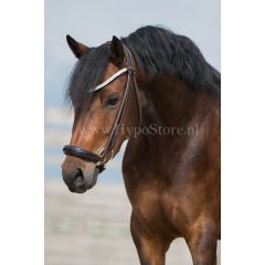 """Premiera """"Novara"""" Brown rolled bridle with drop patent leather noseband, gold buckles"""