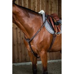 Dyon breast plate with martingale