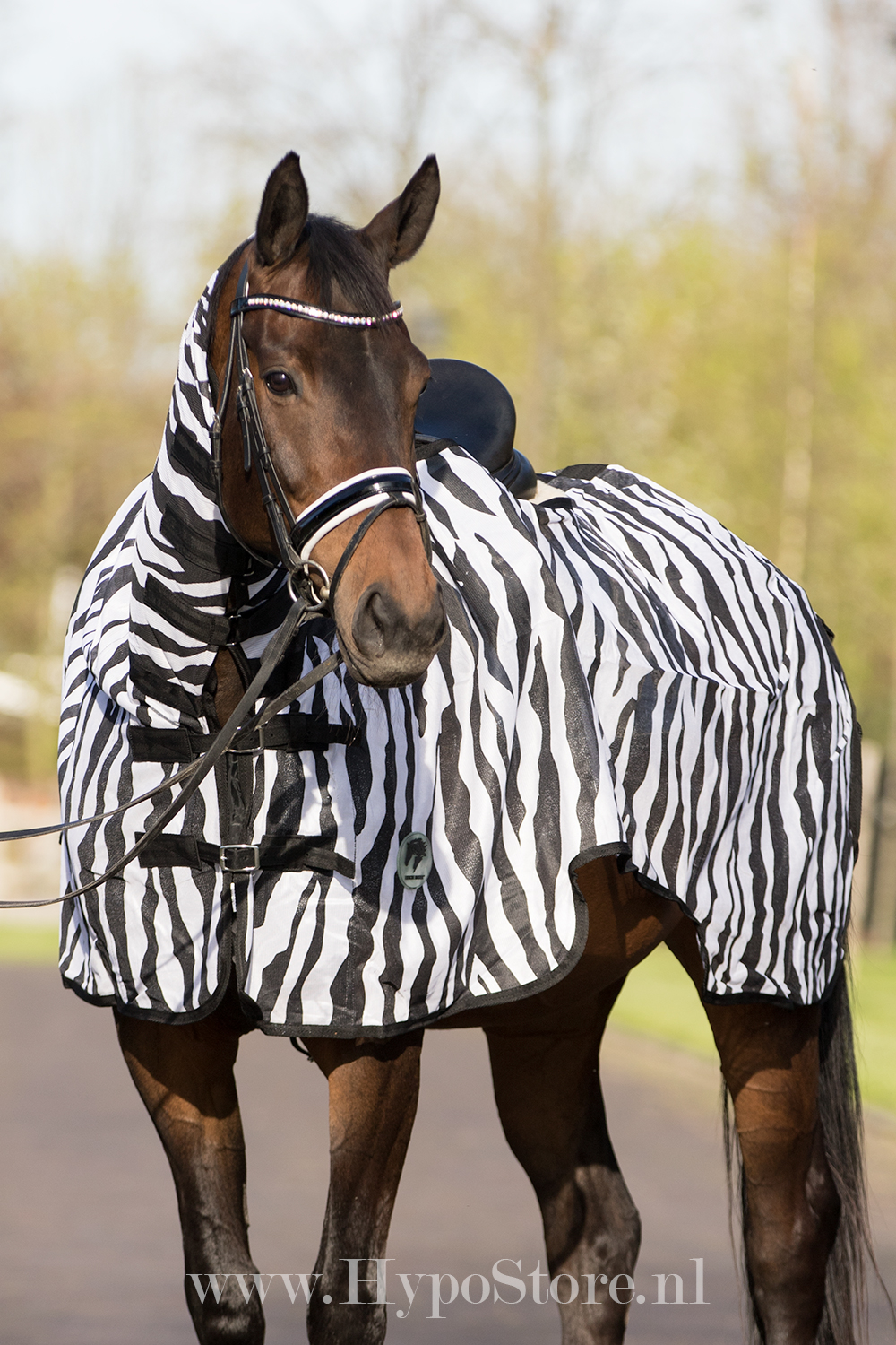 Obrázek MASTER Exercise Riding Rug with Neck