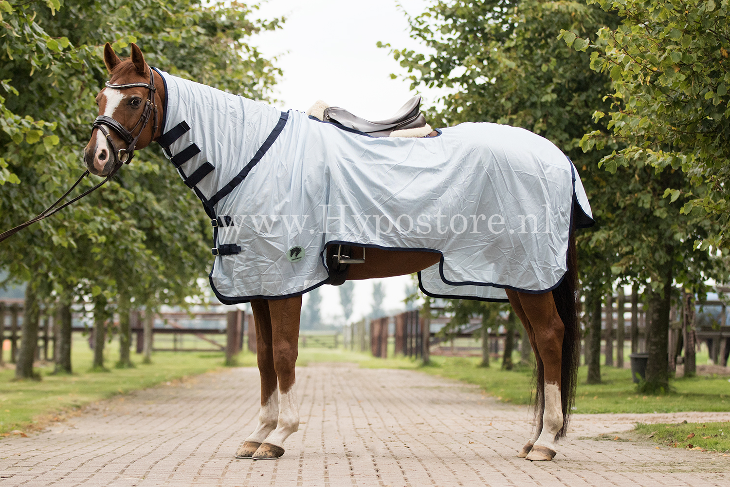 Bild av MASTER Exercise Riding Rug with Neck