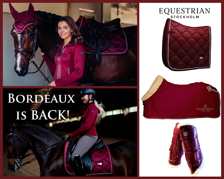Equestrian Stockholm Bordeaux