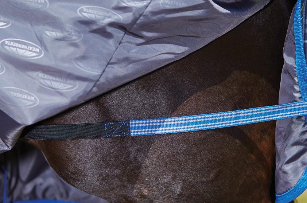 Weatherbeeta premier trio leg straps